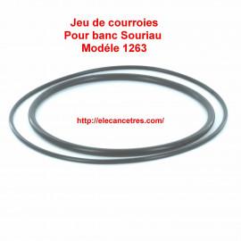 Courroie pour banc allumeur SOURIAU 1263 - 1264 01/02